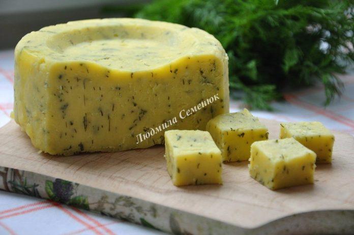 Домашний твердый сыр с зеленью